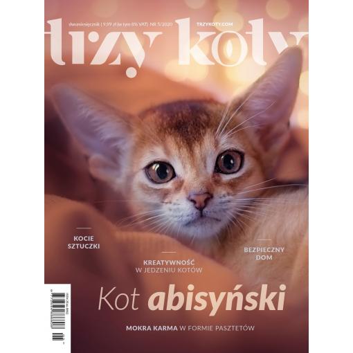 Magazyn Trzy Koty - 5/2020