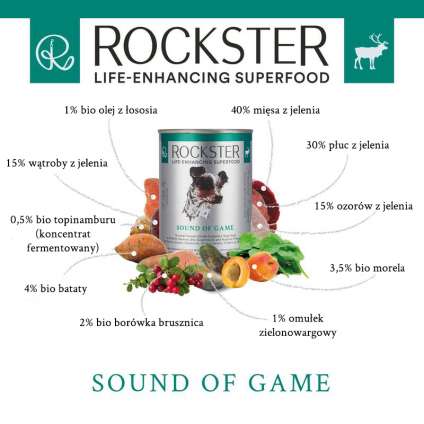 Rockster Sound of game -...