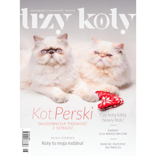 Magazyn Trzy Koty - 6/2018