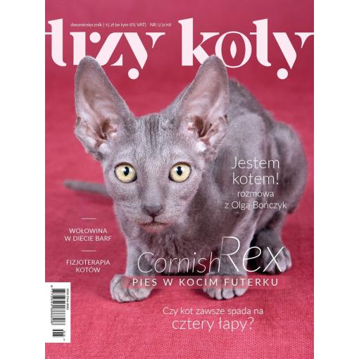 Magazyn Trzy Koty - 5/2018