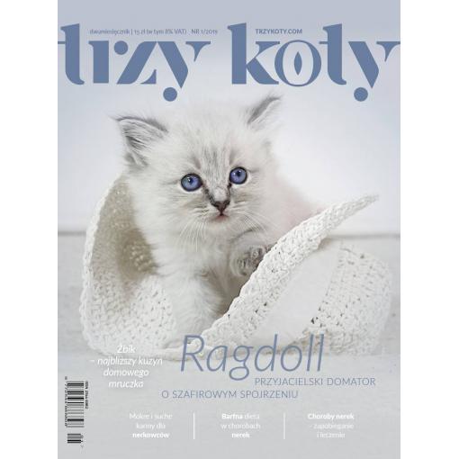 Magazyn Trzy Koty - 1/2019