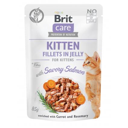 BRIT CARE CAT FJ KITTEN...