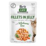 BRIT CARE CAT FJ WHOLESOME...