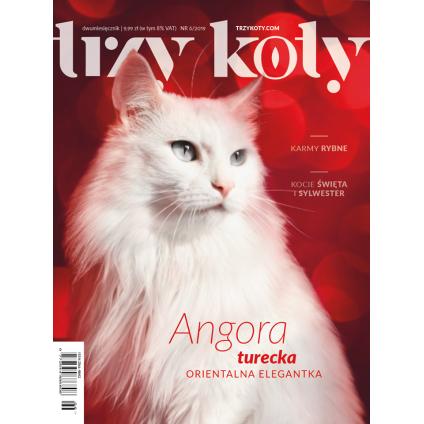 Magazyn Trzy Koty - 6/2019